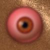 São seus olhos