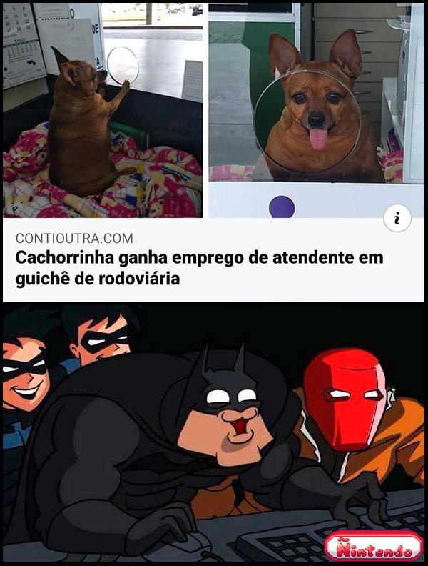 Cadela Honesta
